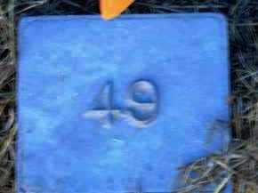 UNKNOWN, MARKER #49 - Poinsett County, Arkansas | MARKER #49 UNKNOWN - Arkansas Gravestone Photos