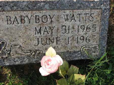 WATTS, BABY BOY - Poinsett County, Arkansas | BABY BOY WATTS - Arkansas Gravestone Photos
