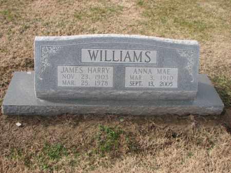 WILLIAMS, ANNA MAE - Poinsett County, Arkansas | ANNA MAE WILLIAMS - Arkansas Gravestone Photos