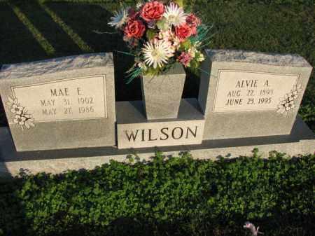 WILSON, ALVIE A. - Poinsett County, Arkansas | ALVIE A. WILSON - Arkansas Gravestone Photos