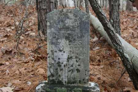 BATES, CANZADY - Polk County, Arkansas | CANZADY BATES - Arkansas Gravestone Photos
