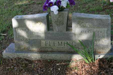 FLEMING, ALEXANDER - Polk County, Arkansas | ALEXANDER FLEMING - Arkansas Gravestone Photos