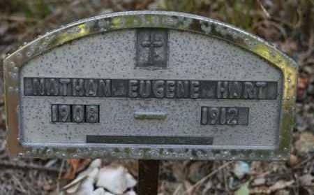 HART, NATHAN EUGENE - Polk County, Arkansas   NATHAN EUGENE HART - Arkansas Gravestone Photos