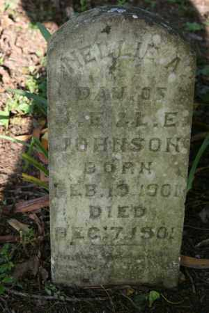 JOHNSON, NELLIE A. - Polk County, Arkansas | NELLIE A. JOHNSON - Arkansas Gravestone Photos