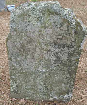 WILSON SHEWMAKE, FANNIE - Polk County, Arkansas | FANNIE WILSON SHEWMAKE - Arkansas Gravestone Photos
