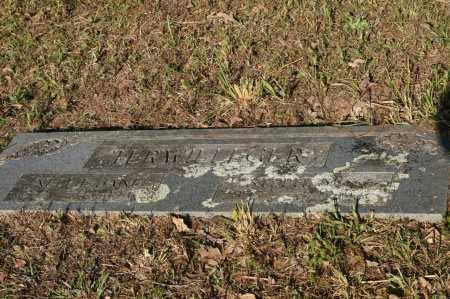 TERWILLEGER, NELLIE JANE - Polk County, Arkansas | NELLIE JANE TERWILLEGER - Arkansas Gravestone Photos