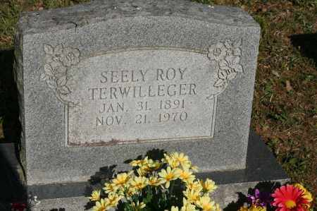 TERWILLEGER, SEELY ROY - Polk County, Arkansas | SEELY ROY TERWILLEGER - Arkansas Gravestone Photos