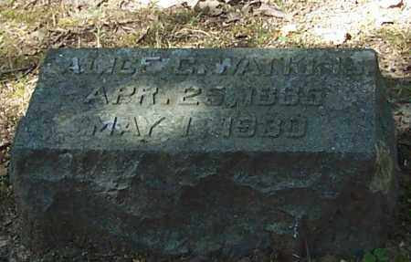 WATKINS, ALICE - Polk County, Arkansas | ALICE WATKINS - Arkansas Gravestone Photos
