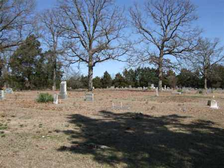 *OLD BAPTIST CEMETERY OVERVIEW,  - Pope County, Arkansas |  *OLD BAPTIST CEMETERY OVERVIEW - Arkansas Gravestone Photos
