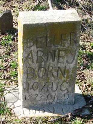 ABNEY, DELLER - Pope County, Arkansas | DELLER ABNEY - Arkansas Gravestone Photos