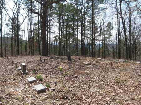 *BARKER CEMETERY OVERVIEW,  - Pope County, Arkansas |  *BARKER CEMETERY OVERVIEW - Arkansas Gravestone Photos