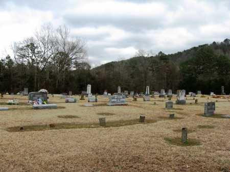 *BOOHER CEMETERY OVERVIEW,  - Pope County, Arkansas |  *BOOHER CEMETERY OVERVIEW - Arkansas Gravestone Photos