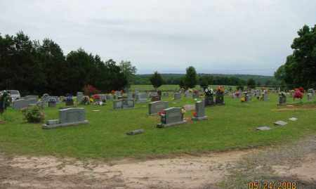 *BOWDEN CEMETERY OVERVIEW,  - Pope County, Arkansas |  *BOWDEN CEMETERY OVERVIEW - Arkansas Gravestone Photos