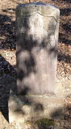 BOWDEN (VETERAN UNION), WILLIAM J - Pope County, Arkansas | WILLIAM J BOWDEN (VETERAN UNION) - Arkansas Gravestone Photos