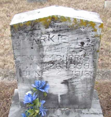 BURRIS, ARKIE LUCILLE - Pope County, Arkansas | ARKIE LUCILLE BURRIS - Arkansas Gravestone Photos