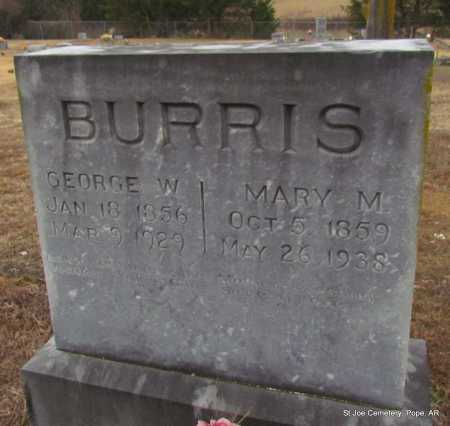 WHARTON BURRIS, MARY MATHILDA - Pope County, Arkansas | MARY MATHILDA WHARTON BURRIS - Arkansas Gravestone Photos