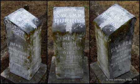 BURRIS, JAMES THOMAS - Pope County, Arkansas | JAMES THOMAS BURRIS - Arkansas Gravestone Photos