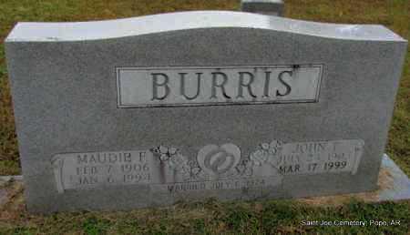 BURRIS, JOHN T - Pope County, Arkansas | JOHN T BURRIS - Arkansas Gravestone Photos