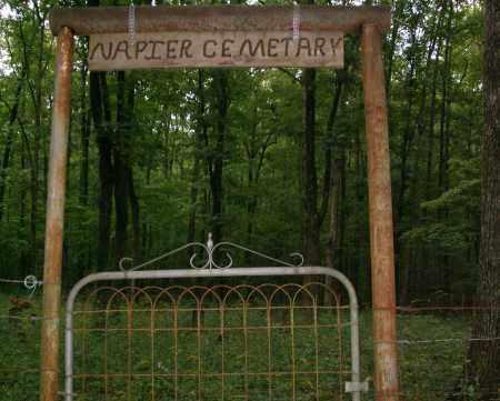 *NAPIER CEMETERY,  - Pope County, Arkansas |  *NAPIER CEMETERY - Arkansas Gravestone Photos