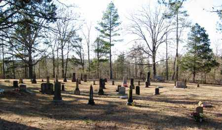 *CHILDERS CEMETERY OVERVIEW,  - Pope County, Arkansas |  *CHILDERS CEMETERY OVERVIEW - Arkansas Gravestone Photos