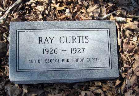 CURTIS, RAY - Pope County, Arkansas | RAY CURTIS - Arkansas Gravestone Photos