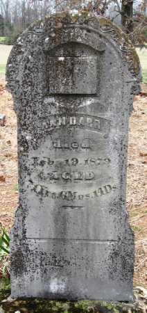DARR, ANN - Pope County, Arkansas   ANN DARR - Arkansas Gravestone Photos