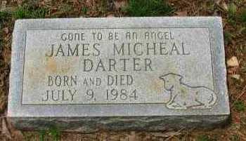DARTER, JAMES MICHEAL - Pope County, Arkansas | JAMES MICHEAL DARTER - Arkansas Gravestone Photos