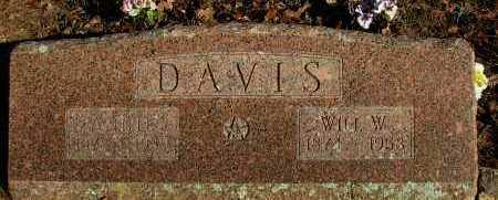 DAVIS, WILL W - Pope County, Arkansas   WILL W DAVIS - Arkansas Gravestone Photos