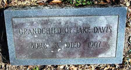 DAVIS, GRANDCHILD - Pope County, Arkansas   GRANDCHILD DAVIS - Arkansas Gravestone Photos