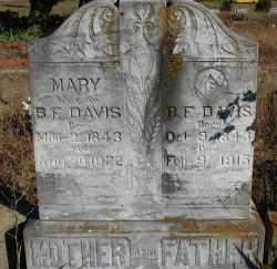 DAVIS, MARY - Pope County, Arkansas | MARY DAVIS - Arkansas Gravestone Photos