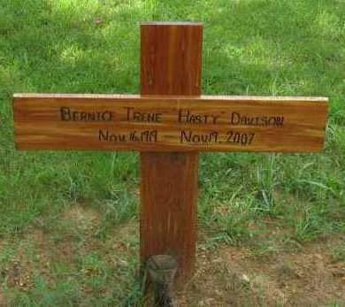"DAVISON, BERNICE IRENE ""HASTY"" - Pope County, Arkansas   BERNICE IRENE ""HASTY"" DAVISON - Arkansas Gravestone Photos"