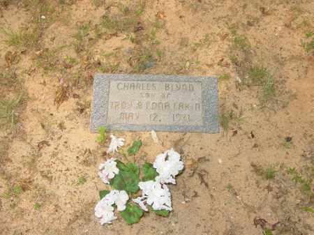 EAKIN, CHARLES BLYNN - Pope County, Arkansas   CHARLES BLYNN EAKIN - Arkansas Gravestone Photos