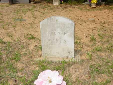 EAKIN, FRONIE - Pope County, Arkansas | FRONIE EAKIN - Arkansas Gravestone Photos