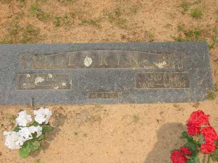 EAKIN, REBECCA - Pope County, Arkansas | REBECCA EAKIN - Arkansas Gravestone Photos