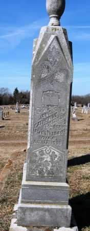 FERGUSON, JANE CATHERINE - Pope County, Arkansas   JANE CATHERINE FERGUSON - Arkansas Gravestone Photos