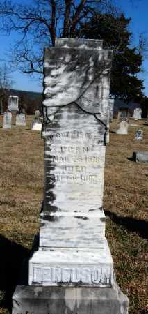 FERGUSON, W  GUY - Pope County, Arkansas | W  GUY FERGUSON - Arkansas Gravestone Photos