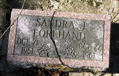 FOREHAND, SANDRA J - Pope County, Arkansas | SANDRA J FOREHAND - Arkansas Gravestone Photos