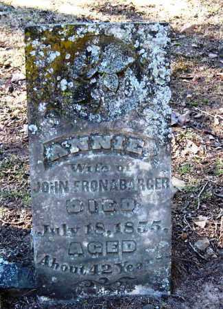 FRONABARGER, ANNIE - Pope County, Arkansas | ANNIE FRONABARGER - Arkansas Gravestone Photos