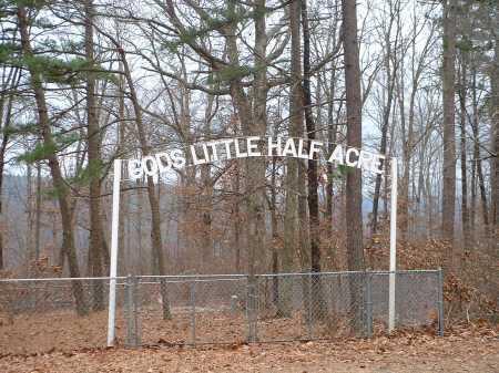 *GODS LITTLE HALF ACRE GATE,  - Pope County, Arkansas |  *GODS LITTLE HALF ACRE GATE - Arkansas Gravestone Photos