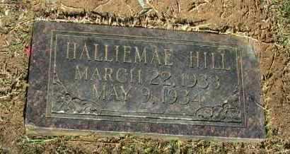 HILL, HALLIEMAE - Pope County, Arkansas   HALLIEMAE HILL - Arkansas Gravestone Photos