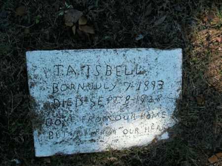ISBELL, T A - Pope County, Arkansas   T A ISBELL - Arkansas Gravestone Photos
