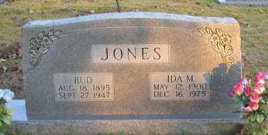 JONES, IDA M - Pope County, Arkansas | IDA M JONES - Arkansas Gravestone Photos