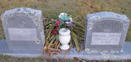 JONES, MINNIE - Pope County, Arkansas | MINNIE JONES - Arkansas Gravestone Photos