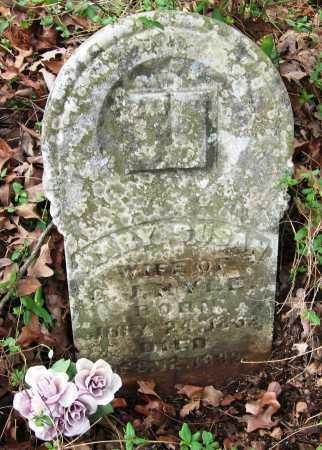 KYLE, MARY SUSAN - Pope County, Arkansas | MARY SUSAN KYLE - Arkansas Gravestone Photos