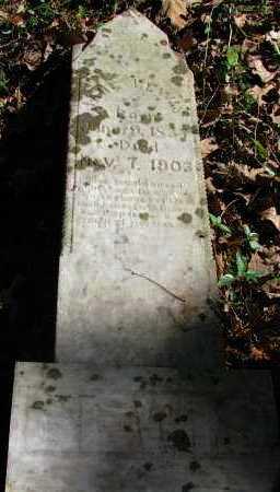 LEWIS, JANE - Pope County, Arkansas | JANE LEWIS - Arkansas Gravestone Photos