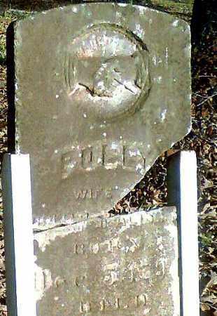 "WEBB MCALISTER, MARY ""POLLY"" - Pope County, Arkansas | MARY ""POLLY"" WEBB MCALISTER - Arkansas Gravestone Photos"