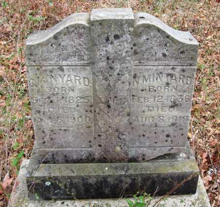 MINYARD, N - Pope County, Arkansas | N MINYARD - Arkansas Gravestone Photos