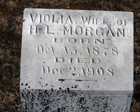 MORGAN, VIOLIA - Pope County, Arkansas   VIOLIA MORGAN - Arkansas Gravestone Photos