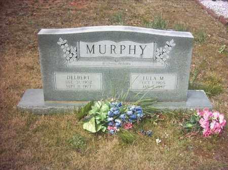 MURPHY, LULA MARY - Pope County, Arkansas | LULA MARY MURPHY - Arkansas Gravestone Photos