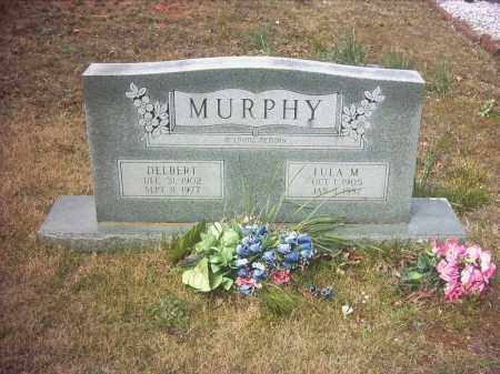 MURPHY, DELBERT HAYWARD - Pope County, Arkansas | DELBERT HAYWARD MURPHY - Arkansas Gravestone Photos